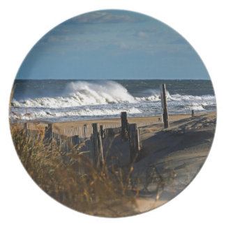 Autumn Waves and Dunes at the Beach Plate