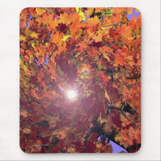 Autumn Whirl Mouse Pad