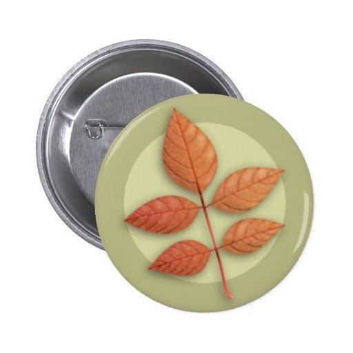 Autumn White Ash Leaf Button