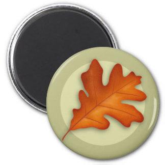 Autumn White Oak Leaf Magnet