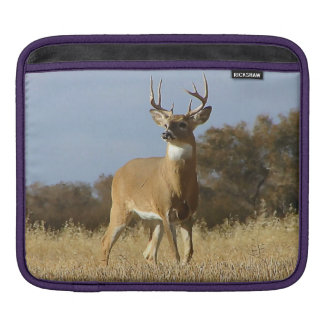 Autumn Whitetail Buck iPad Sleeve