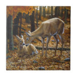 Autumn Whitetail Doe and Fawn Small Square Tile
