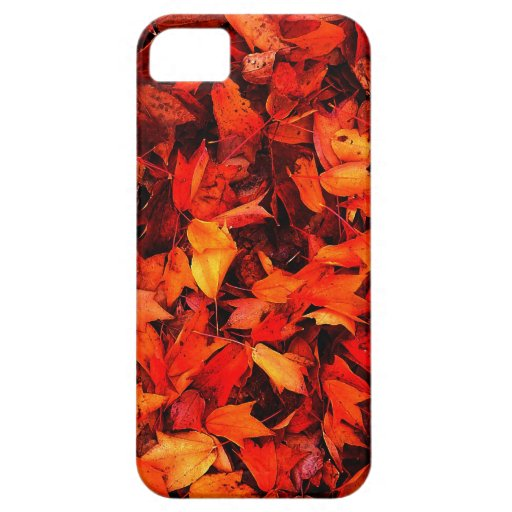 Autumn winter Leafs natural natural  Green Trees E iPhone 5 Covers