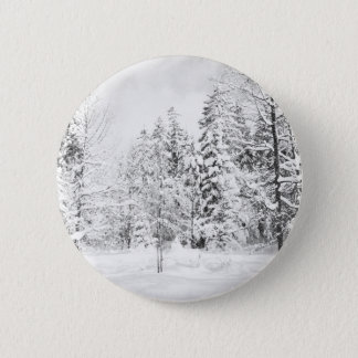 Autumn winter Leafs natural Trees Earth Beautiful Pinback Button