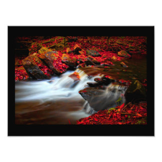 Autumn with black background photo print
