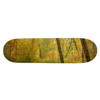 Autumn Woodlands Skateboard