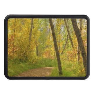 Autumn Woodlands Tow Hitch Cover