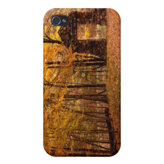 Autumn Woods Cover For iPhone 4
