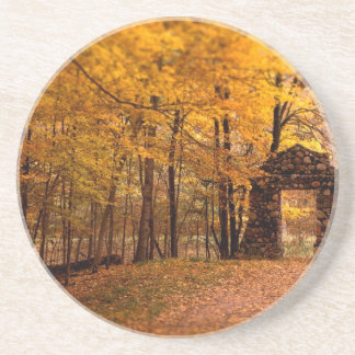 Autumn Woods Drink Coasters