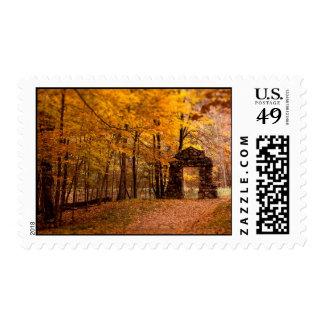 Autumn Woods Postage Stamp