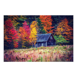 Autumn Woods Shack Photographic Print