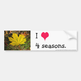 Autumn Yellow Maple Leaf Bumper Sticker