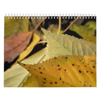 Autumnal Glory Calendar