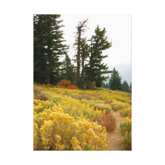 Autumnal Idaho Gallery Wrap Canvas