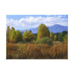Autumnal Idaho Gallery Wrapped Canvas