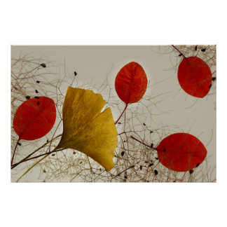 Autumnal leaves poster