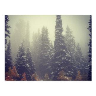 Autumnal Mists II Postcard