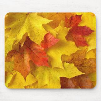 Autumnal palette mouse pad