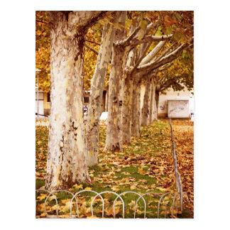 Autumnal stamp of an urban park postcard