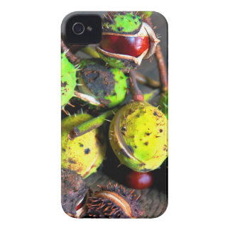 Autumnal still lives with Kastanien iPhone 4 Cover