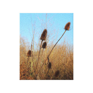 Autumnal Teasel Portrait Aspect Canvas Print