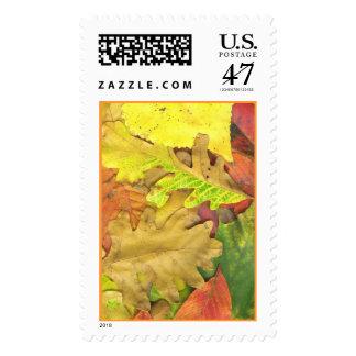 Autumnleaves2 Stamp