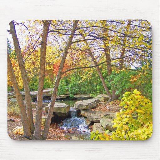 Autumn's Beauty Mouse Pad