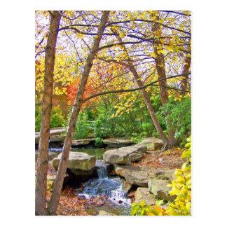 Autumn's Beauty Postcard