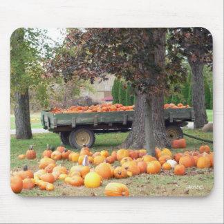 Autumn's Bounty I Mousepad