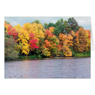 AUTUMNS BRILLIANT COLORS CARD