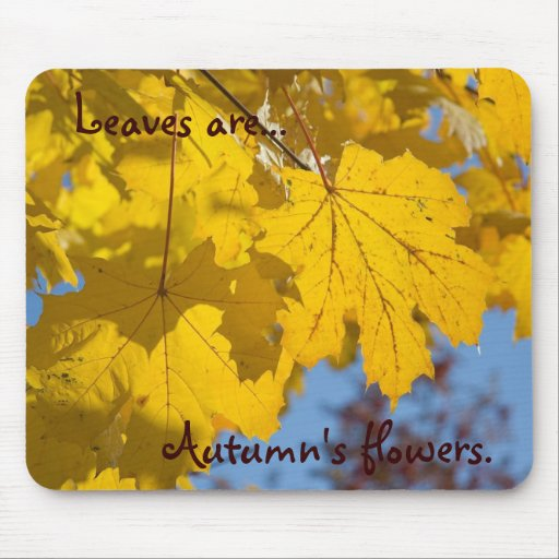 Autumn's flowers  by TDGallery Mouse Pad