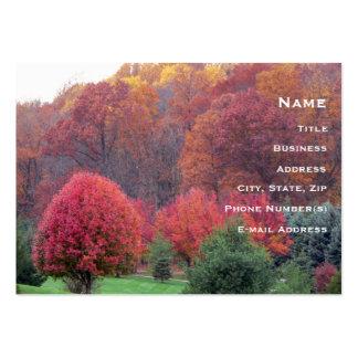 Autumn's Glory Business Card