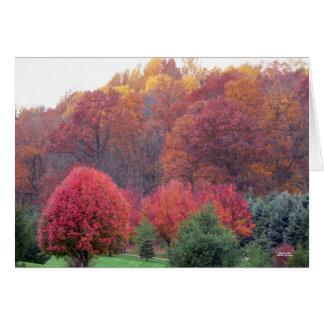 Autumn's Glory Card