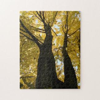 Autumn's Golden Glow Jigsaw Puzzle