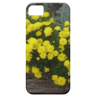 Autumn's in the Air iPhone SE/5/5s Case