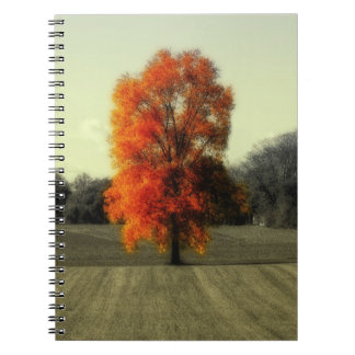 Autumn's Living Tree Spiral Notebook