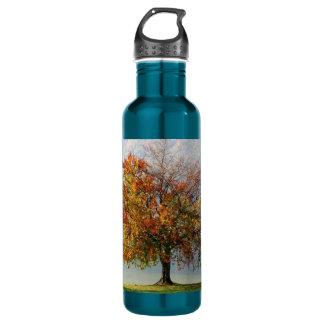 Autumn's Tree 24oz Water Bottle