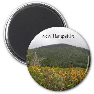 Autunm en imán del refrigerador de New Hampshire