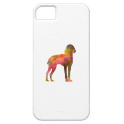 Auvergne Pointer in watercolor iPhone SE/5/5s Case