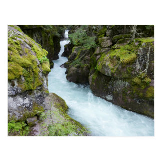 Avalanche Gorge I at Glacier National Park Postcard