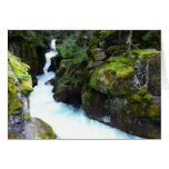Avalanche Gorge I in Glacier National Park Greeting Card