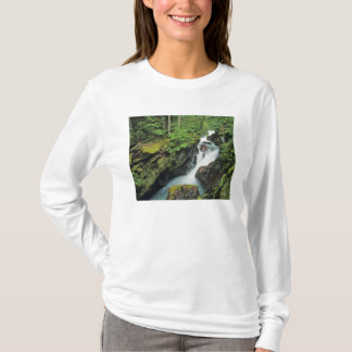 Avalanche Gorge in Glacier National Park in T-Shirt