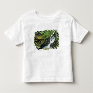 Avalanche Gorge in Glacier National Park in Toddler T-shirt