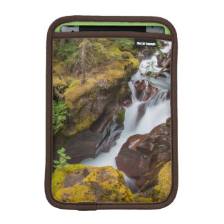 Avalanche Gorge In Glacier National Park iPad Mini Sleeve