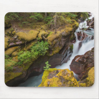 Avalanche Gorge In Glacier National Park Mouse Pad