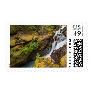 Avalanche Gorge In Glacier National Park Postage Stamp