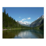 Avalanche Lake I in Glacier National Park Postcard