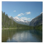 Avalanche Lake I in Glacier National Park Tile