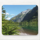 Avalanche Lake II in Glacier National Park Mouse Pad