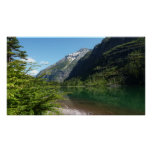 Avalanche Lake II in Glacier National Park Poster